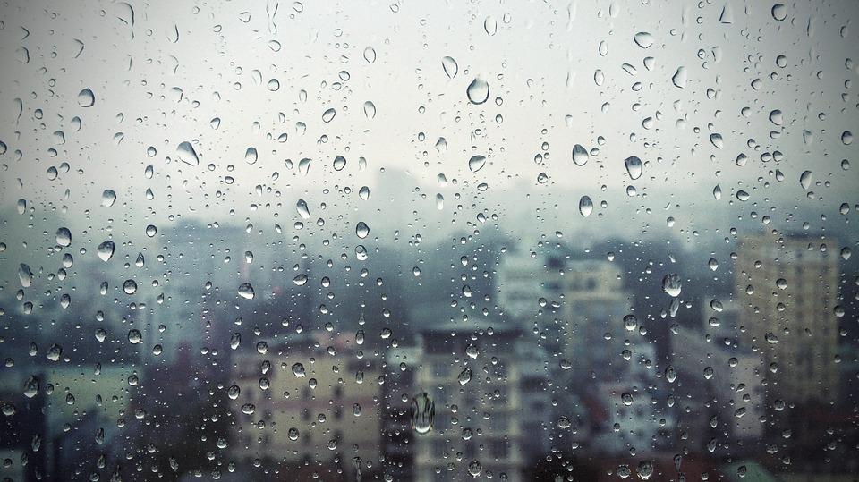 Reflexiones en un viernes lluvioso